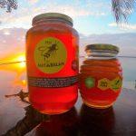 miel de la selva maya