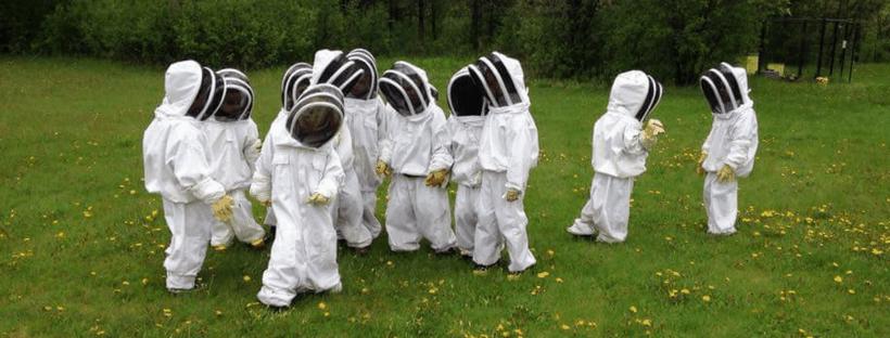 ¿Cómo podemos ayudar a las abejas? enseñar a los niños a cuidar de nuestro planeta