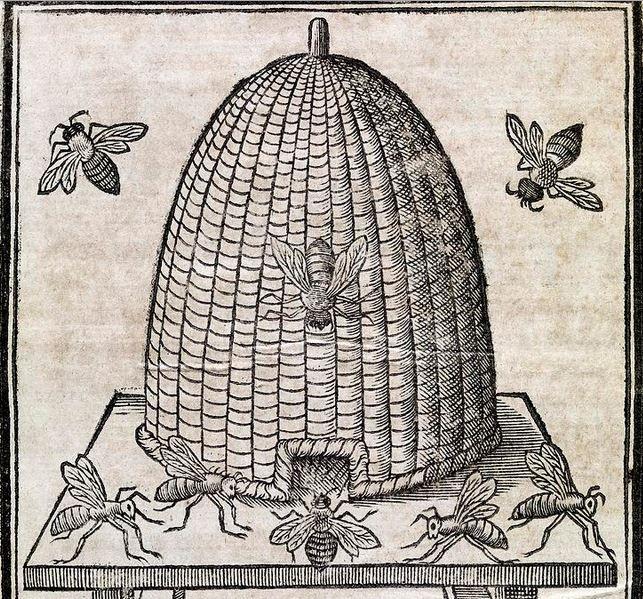 Colmena de paja, Las abejas a través del tiempo, colmena antigua, colmena egipcia
