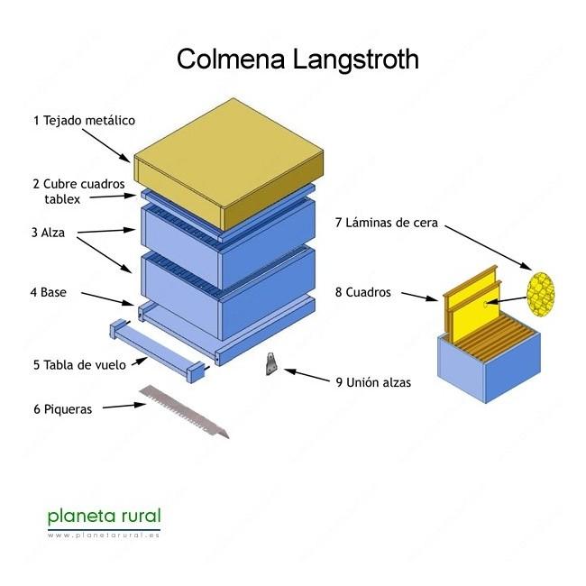 Colmena tipo Langstroth características, caja de apicultura, colmena de abejas moderna, apicultura, Las abejas a través del tiempo.