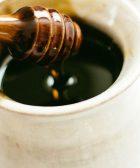 Miel de abejas sin aguijón en el tratamiento de úlceras de pie diabético, miel abeja melipona becheei