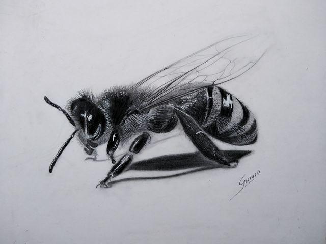 el simbolismo de la abeja